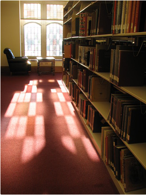 Library Shelves Picture